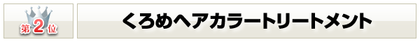 価格ランキングNo.2