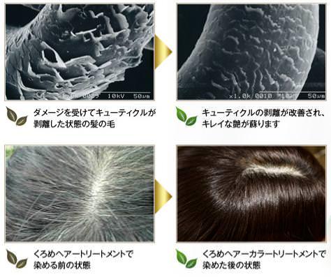痛んだ髪の修復イメージ